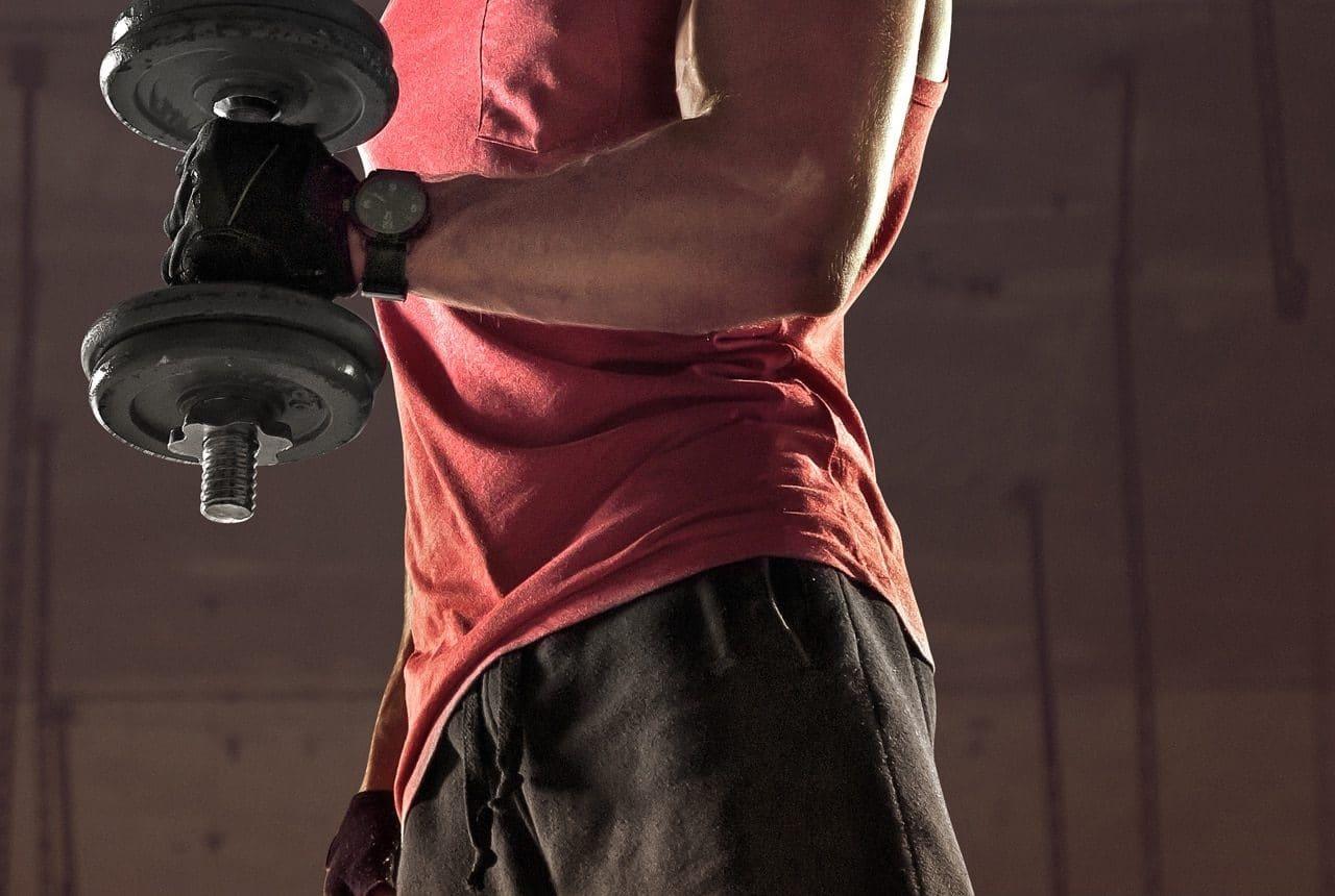 Egym Programm zum Muskelaufbau im intenso Medical Fitness in Darmstadt